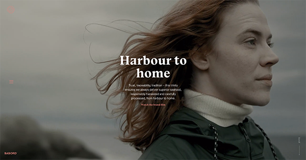 homepage for Barbordgroup with cinematic scene