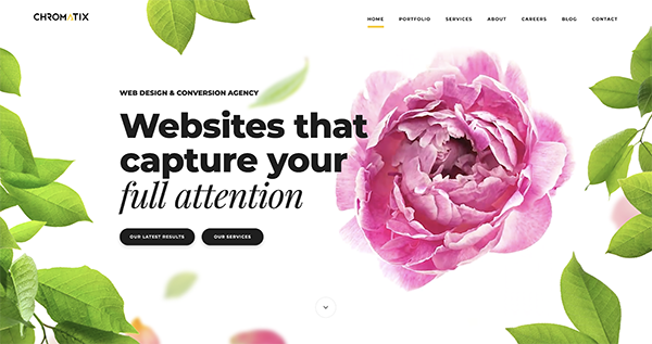 Homepage header with time lapse of flower